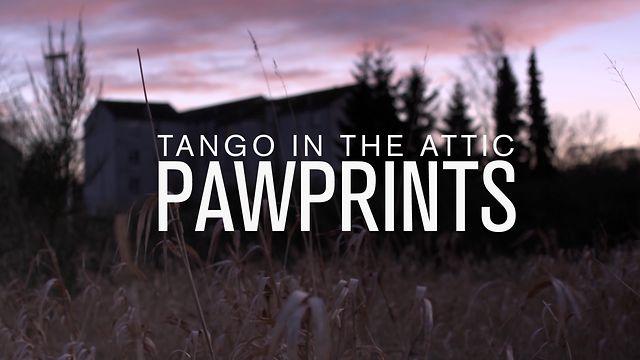 Tango in the Attic - Paw Prints MUSIC VIDEO