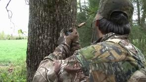 Getting a Shot at a Henned up Gobbler