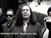 THE WONDER STUFF - Blackberry Way
