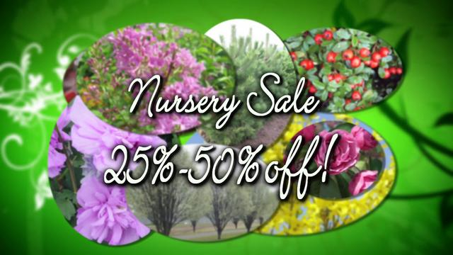 O'Toole's Nursery Sale 2012