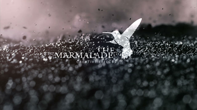THE MARMALADE Reel 2012