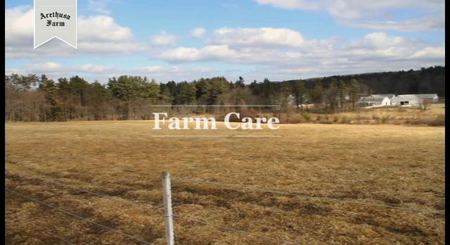 Arethusa Farm - Care for the Cows