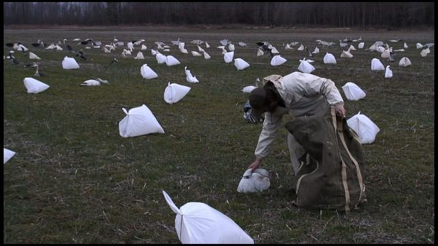 Ghost Bird Press Clip: Hunting