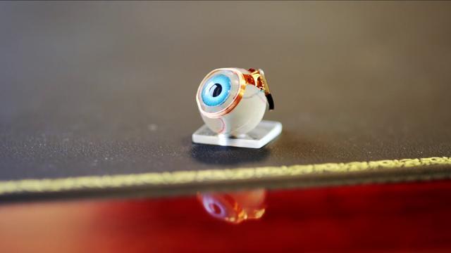 The Bionic Eye | Steven Cantor