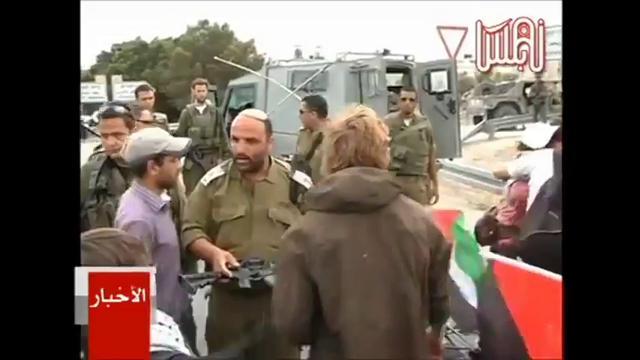 Israeli soldier rams rifle into face of Danish activist
