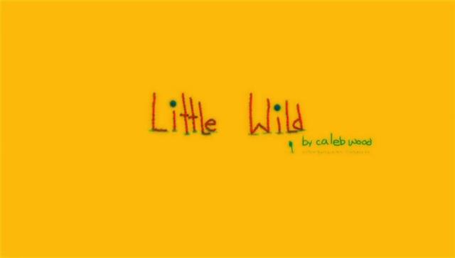 1st PLACE: Little Wild