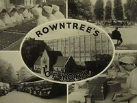 50 Years of Collecting Rowntree&#8217;s