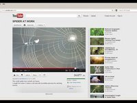 procedural spider web tutorial in softimage ice