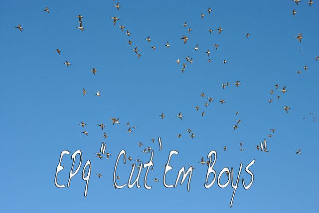 "Fowled Reality EP9 - ""Cut"