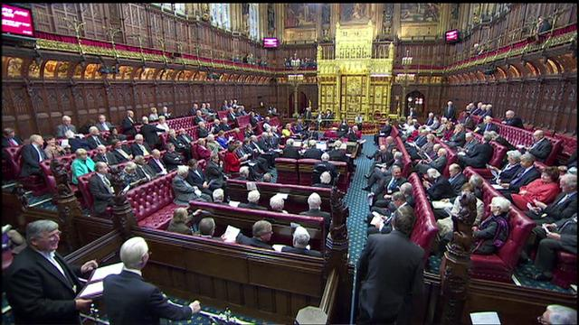 Thumbnail for video 'What is the role of the House of Lords?'