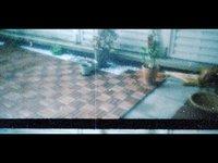 Und auf der Terrasse... (lomokino experience #1) (00:45)