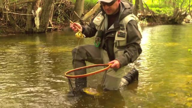 a pesca con la FFM