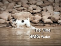 The Vibe @ SMG Wake.4