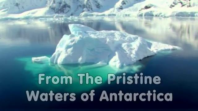 Tri-Krill™ From NWC Naturals Harvested From the Pristine Antarctica
