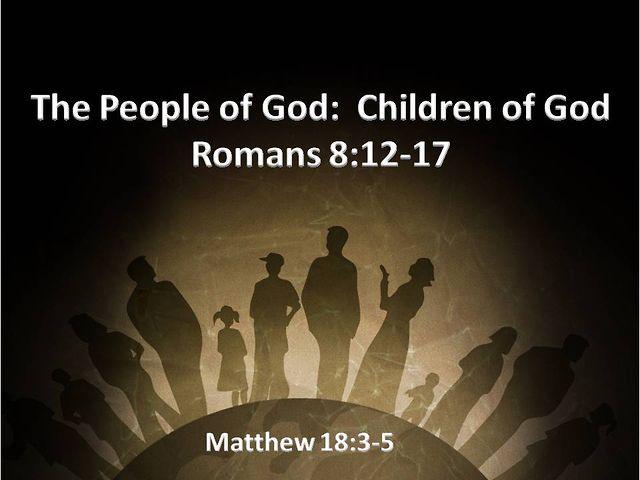 www waptrik download free bible com