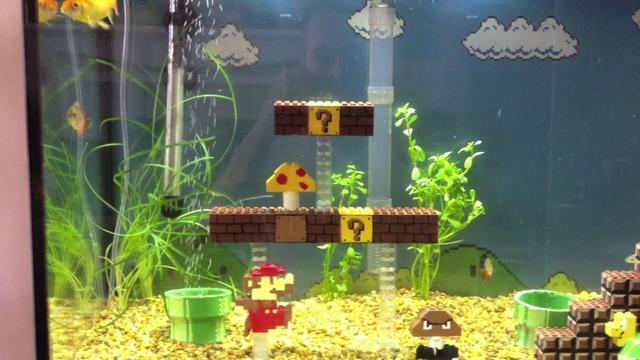 Mario fish tank on vimeo for Mario fish tank