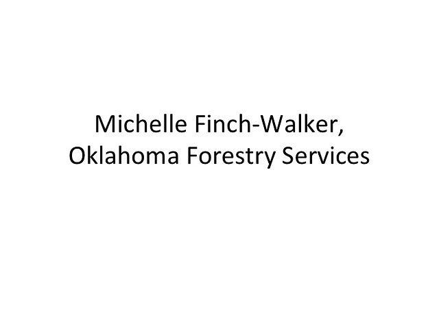 Michelle Finch-Walker