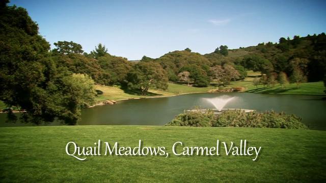 quail valley on will still be popular in 2016