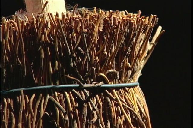 Confección de escobas con enredadera de quilineja en Chiloé.