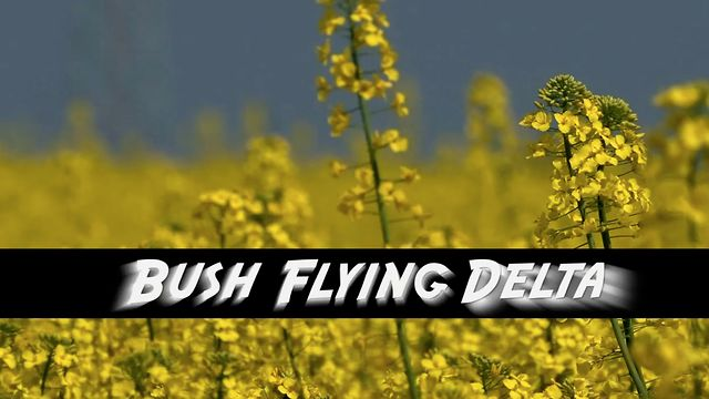 Bushflying Delta