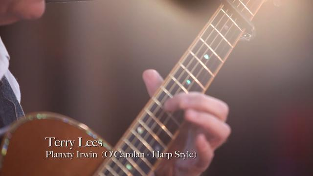 Terry Lees - Planxty Irwin