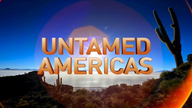 国家地理纪录片《野性美洲Untamed Americas》