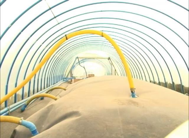 Producción de biogás por medio de purines de vaca