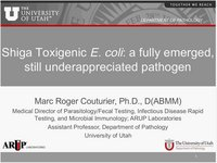 Shiga Toxigenic E. coli: A Fully Emerged, Still Underappreciated Pathogen