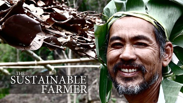 The Sustainable Farmer