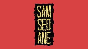 Sam Seoane motion graphics showreel 2012