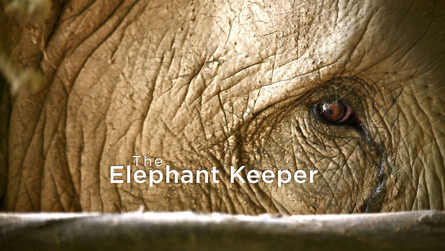 The Elephant Keeper