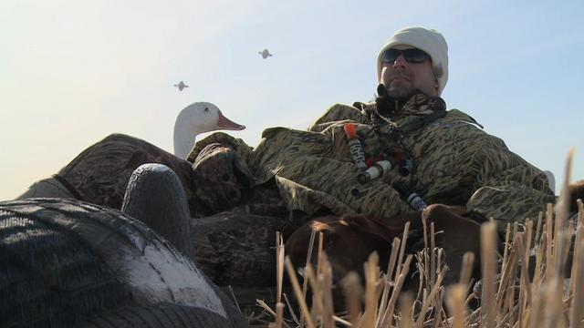 Episode 5-Tail End Snow Geese