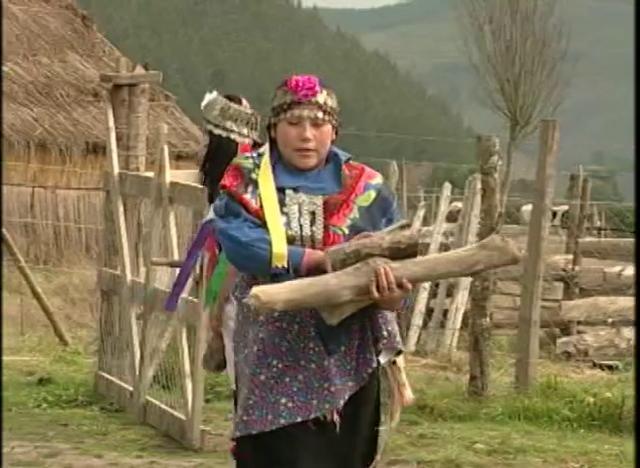 La Ruka Mapuche es la habitación que usaba este pueblo en la antigüedad, aquí se presenta una reconstrucción con sus principales características.