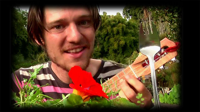 Permaculture Ukulele Musical Project