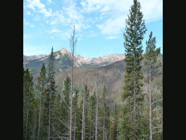 Shane Cycles America (part 5) - Trail Ridge Road