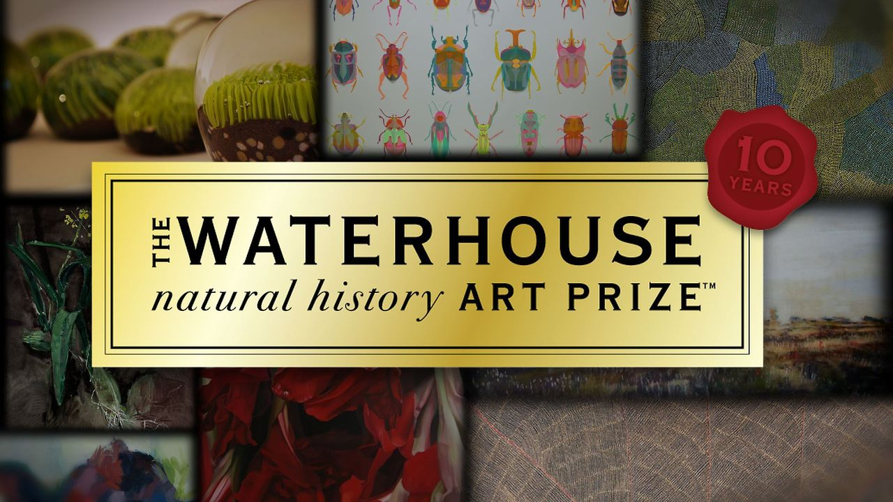 Artists' Inspiration - The Waterhouse Natural History Art Prize™