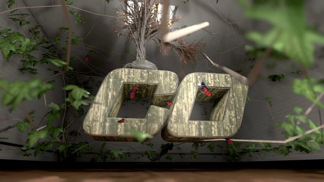 Cinematic Digital Ident 2012
