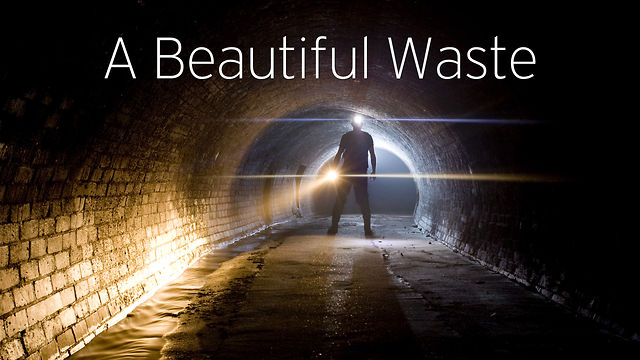 A Beautiful Waste