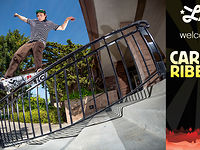 LRG Welcomes Carlos Ribeiro
