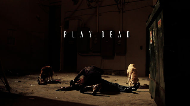 Play Dead (2012) FULL MOVIE