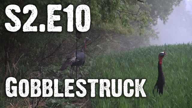 "Whitetails INC S2.E10 - ""Gobblestruck"""