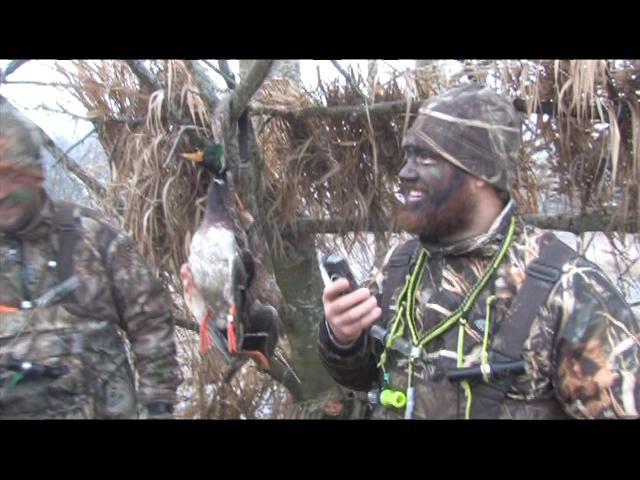 Episode 11 Duck Dog Waterfowl