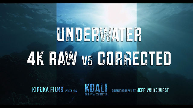 Koali - Bonus Demo - Underwater RAW vs. Color Corrected