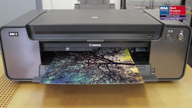 European Photo Printer 2012-2013 - Canon PIXMA PRO-1