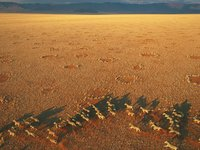 George Steinmetz - African Air