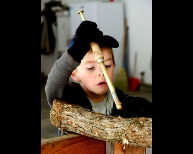 Mushroom Logs for NEMO