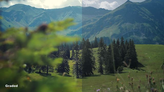 Lightform Swiss Test: NATURE