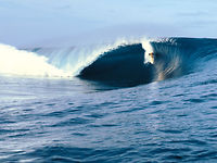 That Wave - Andy Irons