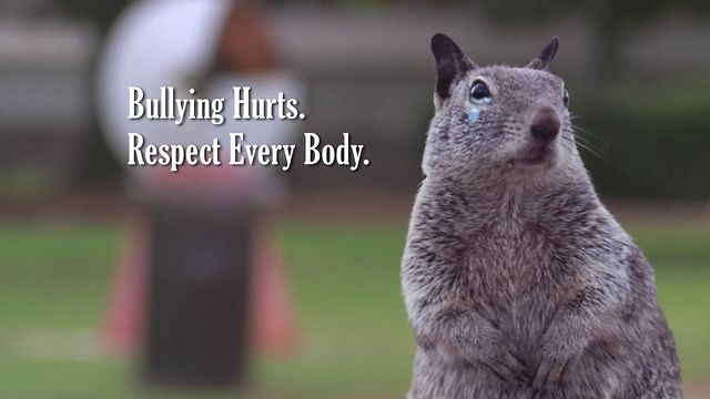Squirrel Wellness - Bullying