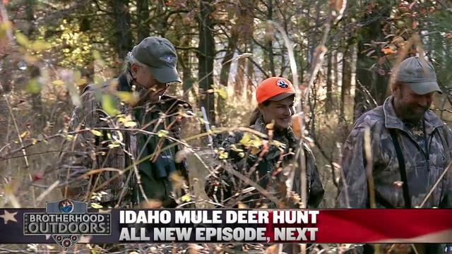 Labor Day Marathon: UA Member Hunts ID Mule Deer